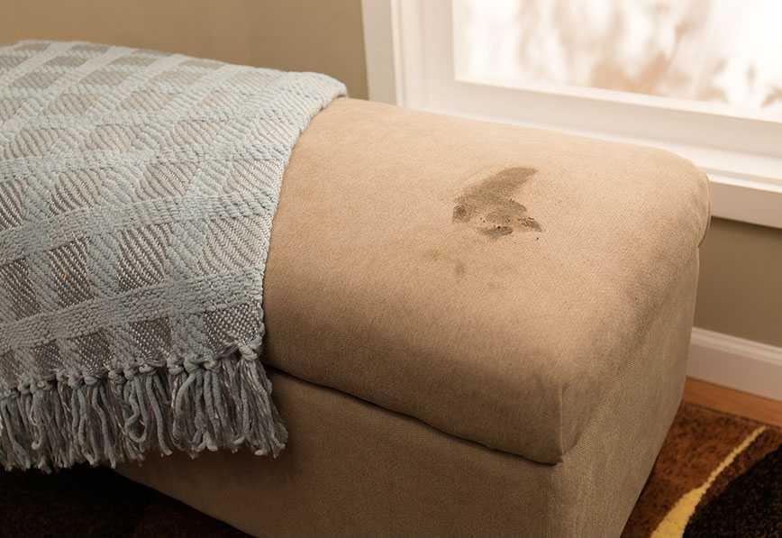 limpia tu mueble y sofas con soil shield